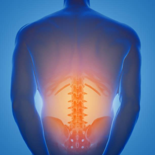 renderização 3d do macho humano inferior com zona de dor - parte inferior - fotografias e filmes do acervo