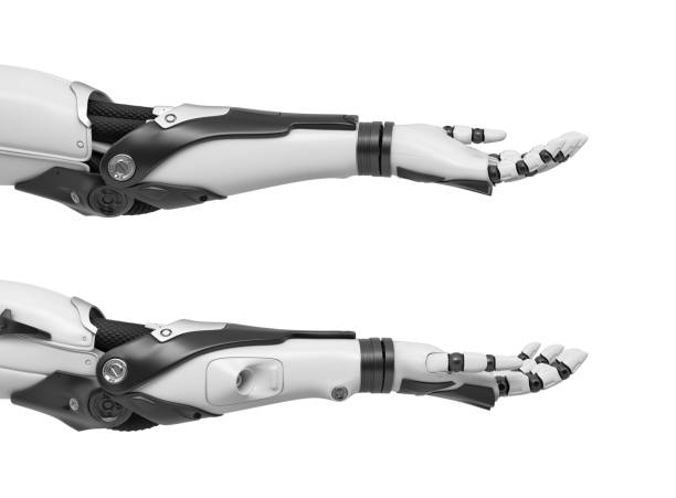 3d rendering of set of two black and white robotic hands with open palms turned upwards 3d rendering of set of two black and white robotic hands with open palms turned upwards. Technology and science. Robotics and automatics. Presenting and reaching out. prosthetic hand stock pictures, royalty-free photos & images