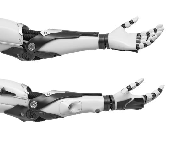 3d rendering of set of two black and white robotic hands with palms open and fingers relaxed and sticking out 3d rendering of set of two black and white robotic hands with palms open and fingers relaxed and sticking out. Robotics and machinery. High tech solutions. Android hands. prosthetic hand stock pictures, royalty-free photos & images