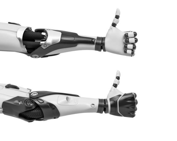 3d rendering of two robot arms with hand fingers in thumbs-up gesture of approval 3d rendering of two robot arms with hand fingers in thumbs-up gesture of approval. Good idea. New technological invention. Breakthrough in robotics. prosthetic hand stock pictures, royalty-free photos & images