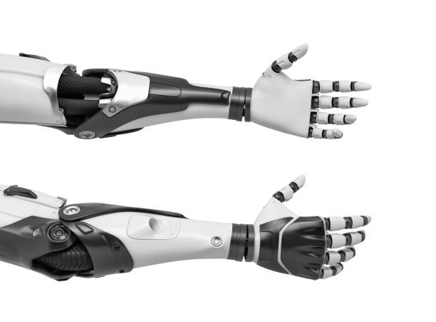 render 3d de dos brazos de robot con manos relajado y abierto para el apretón de manos - brazo fotografías e imágenes de stock