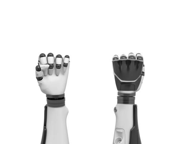 3d rendering of two robotic arms in tight fists shown from the front and the back of the hands 3d rendering of two robotic arms in tight fists shown from the front and the back of the hands. Danger of technologies. Threat of high-tech. Smarts and strength. prosthetic hand stock pictures, royalty-free photos & images