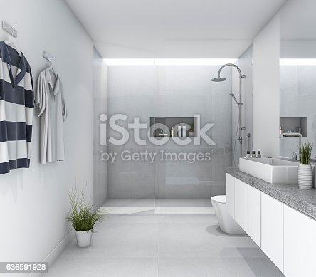 istock 3d rendering white clean modern bathroom with bright daylight 636591928