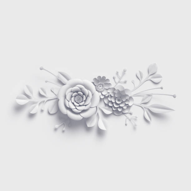 3d rendering white paper flowers background isolated botanical clip picture id909688380?b=1&k=6&m=909688380&s=612x612&w=0&h=ru67n0cwpvyzqi9xvqsosmjeu3qhcuu9nx 0nnlvcpq=