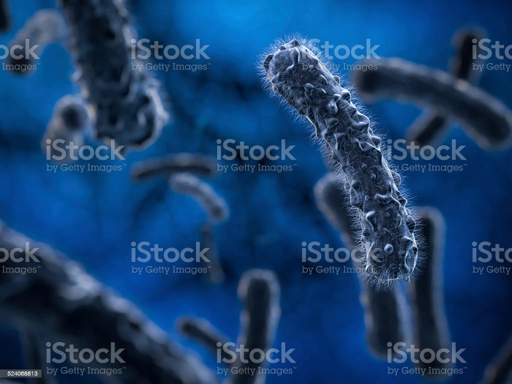 3d SEM bacteria,virus stock photo