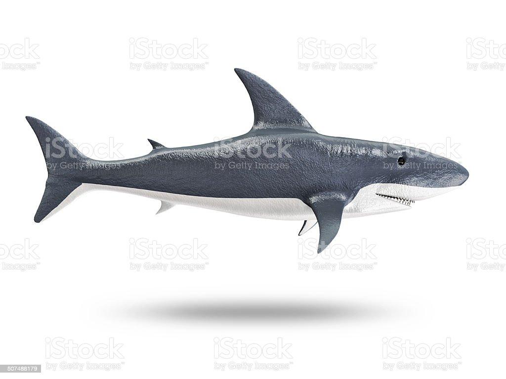 3d Shark isolated on white background stock photo