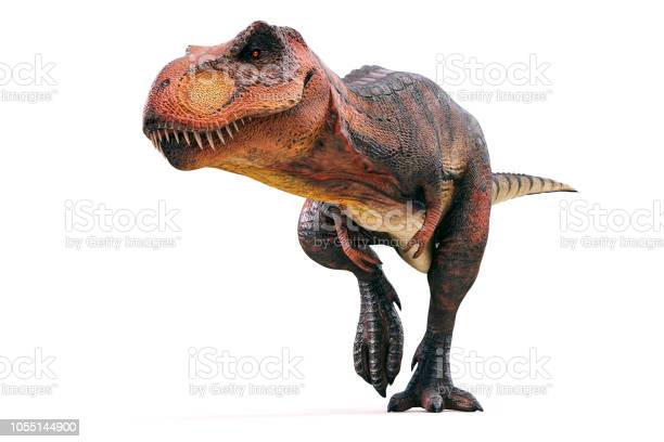 3d tyrannosaurus rex render on white background picture id1055144900?b=1&k=6&m=1055144900&s=612x612&h=rqqo3u338ikf ikgkinoglzcbinu6naxmmzmhi8qt1u=