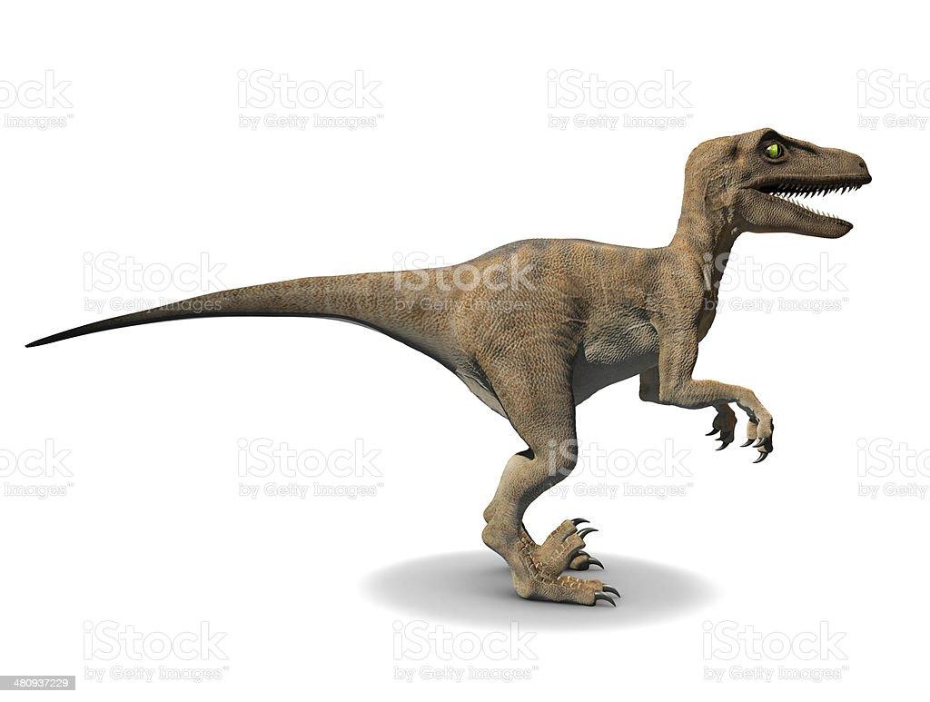 3d Velociraptor stock photo