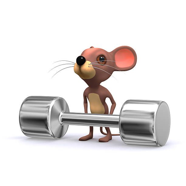 3 d maus-weightlifter - maus comic stock-fotos und bilder