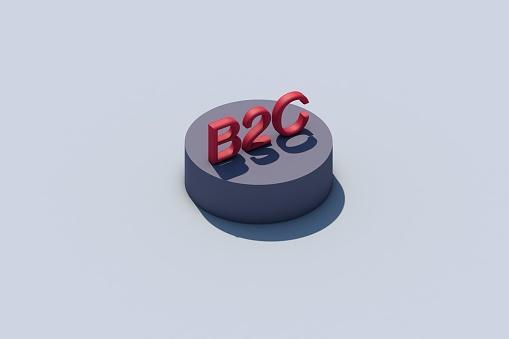 B2C 3d word