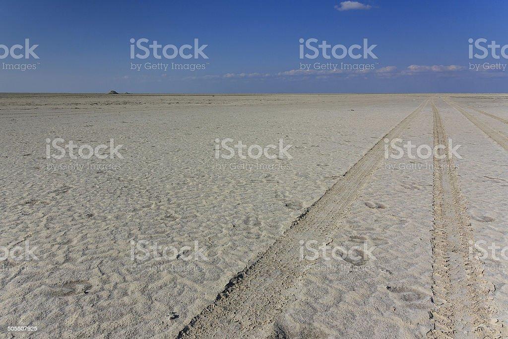 4wd track saltpan stock photo