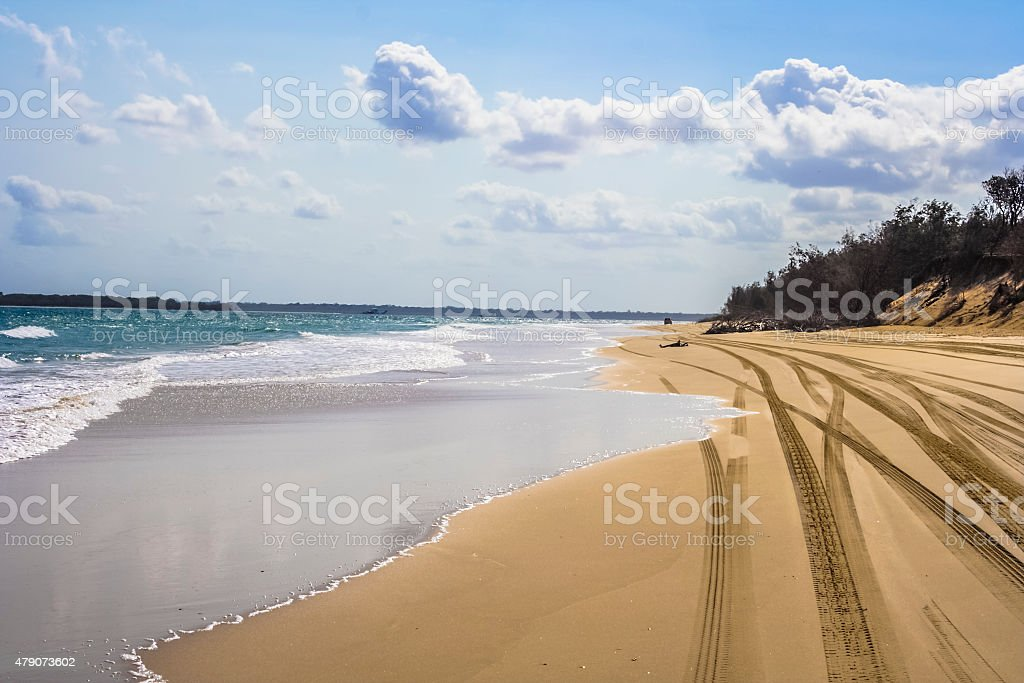 4x4 tracks on beach stock photo