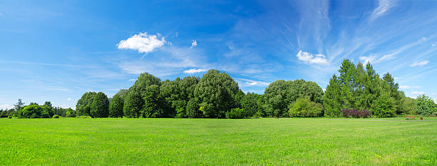 64Mpix Summer Landscape Panoramic stock photo