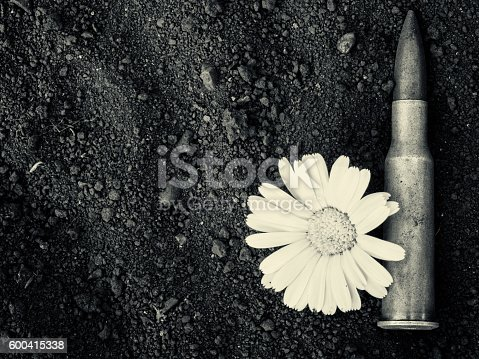 istock 7.62mm Bullet and Flower Monochrome 600415338
