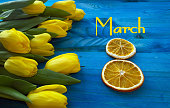 8th of march concept design with yellow tulips on contrast blue wooden background