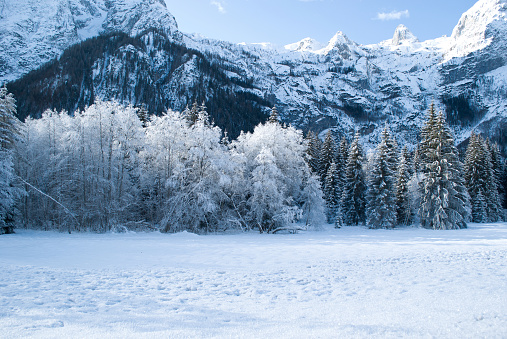 a wonderful and cold winter