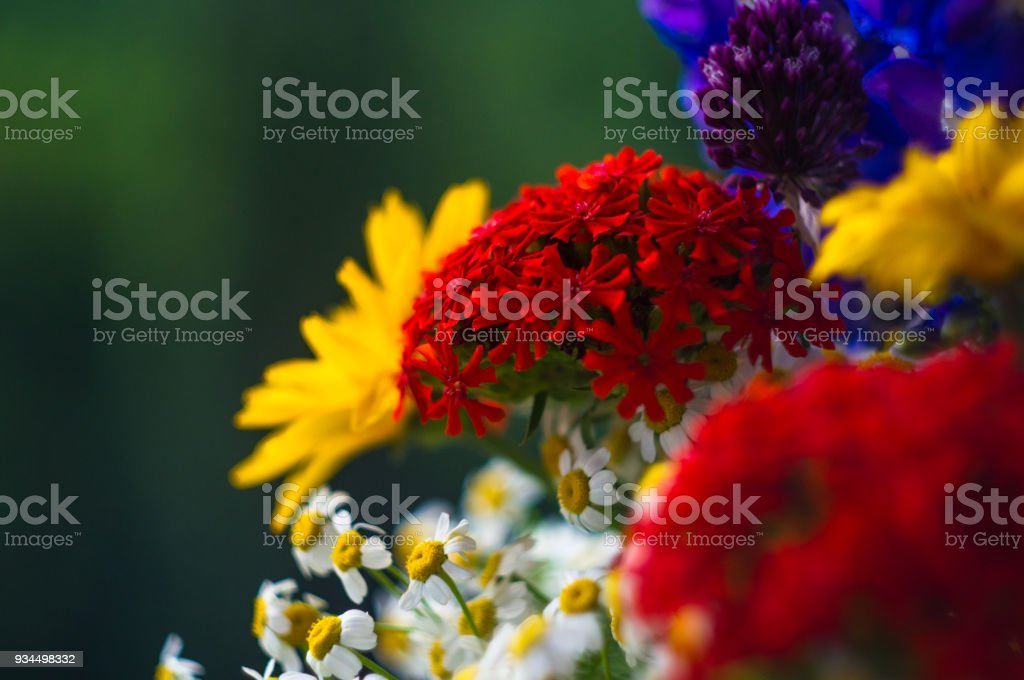 A bouquet of bright spring flowers of various types stock photo a bouquet of bright spring flowers of various types royalty free stock photo mightylinksfo