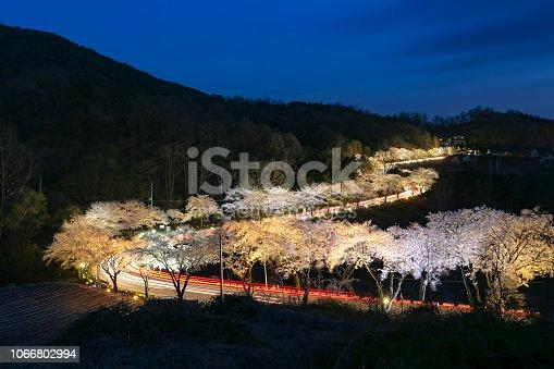 충북 제천 청풍 사이를 연결하는 도로입니다 봄철 벚꽃이 피면은 야경이 아름다운 곳입니다