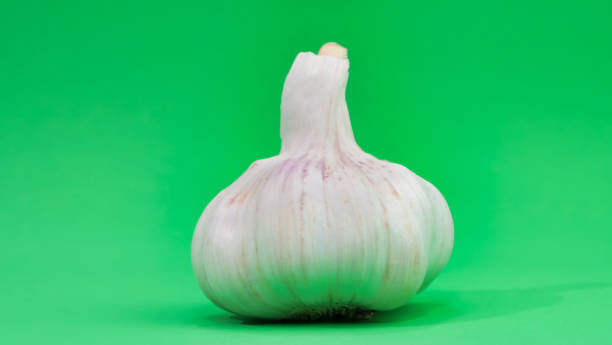 a clove of garlic close up on a green background stock photo