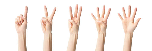 a collage of hand signs stock photo