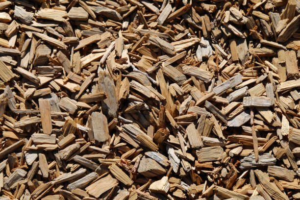 a detailed closeup angle shot view looking down at some shredded wood chip dry mulch ground covering stock photo