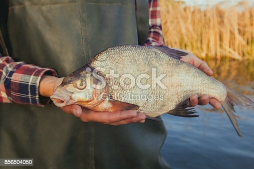 1145410808 istock photo a fisherman standing in the water holding in his hand 856504050