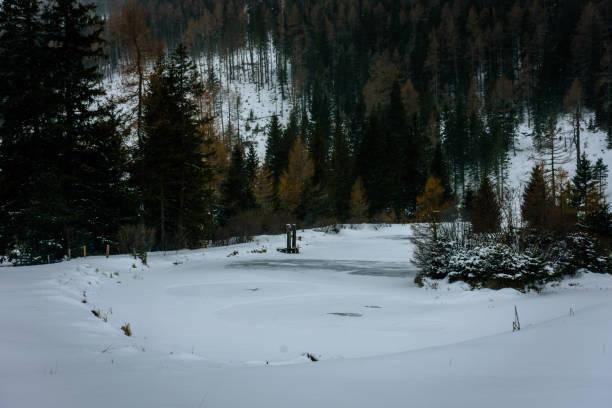 ein Gefrorener Teich mit einer kleinen Insel im Wald – Foto