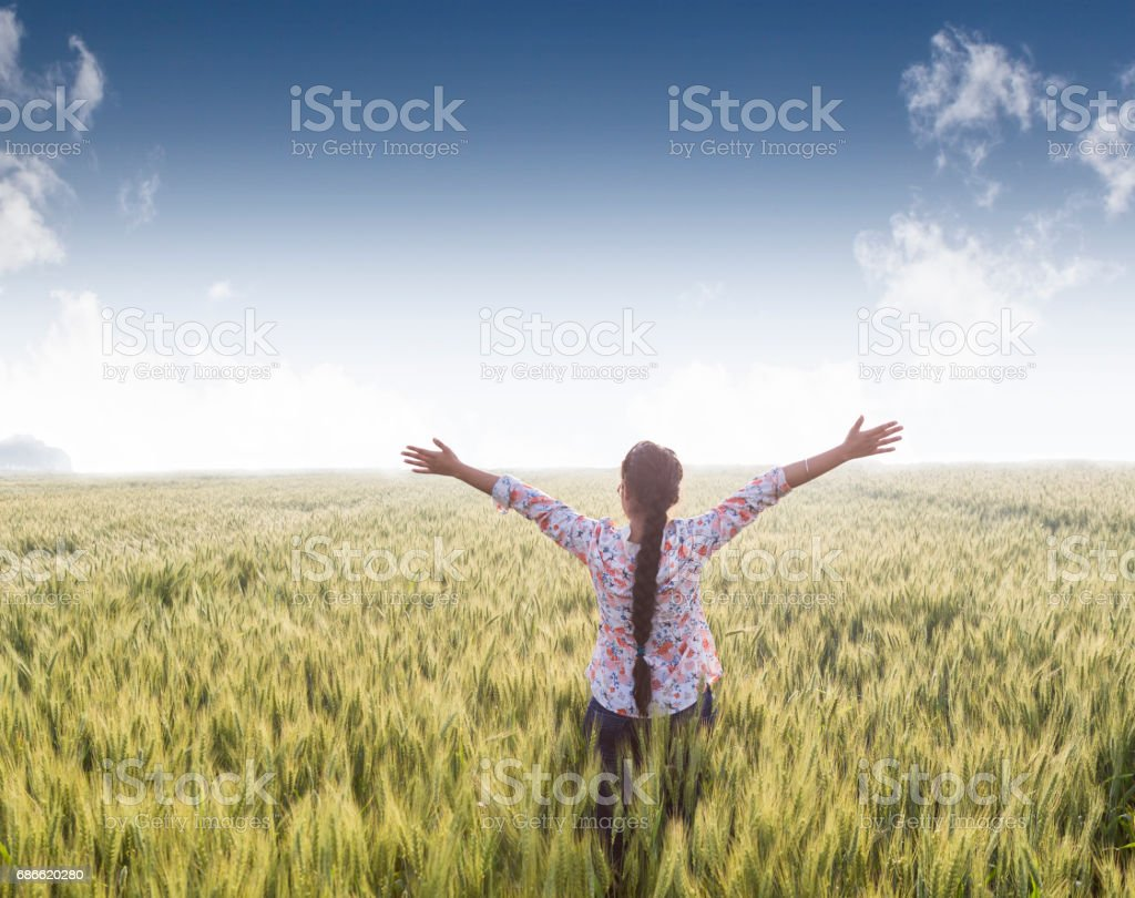 a girl with stretched arms in wheat field royalty-free stock photo