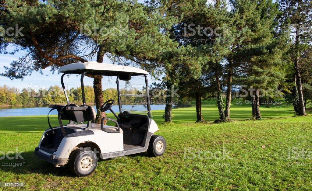 une voiturettes de golf sur un parcours de golf - Photo