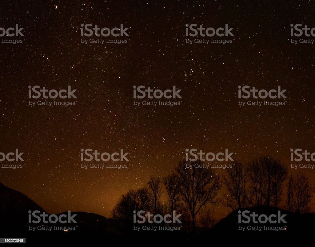 a group of trees in front of the nightly sky stock photo