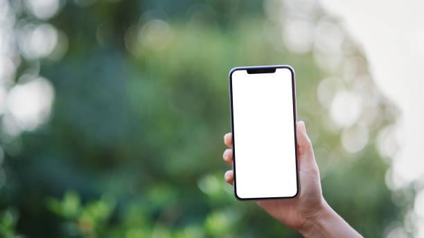eine Hand hält schwarzes Handy mit leerem Desktop-Bildschirm mit grünem Naturhintergrund – Foto