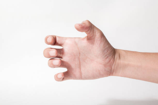 a hand something like a bottle on white backgrounds - human hand stock photos and pictures