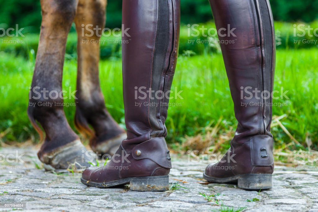a horsewoman in riding boots near a horse stock photo