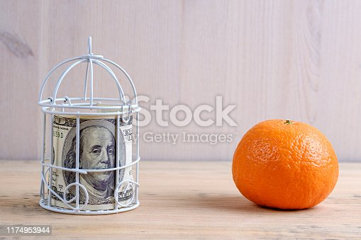 istock a hundred dollars in a cage next to it is an orange on a wooden 1174953944