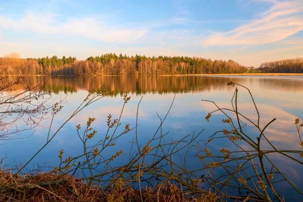 Ein See im Wald in Deutschland – Foto