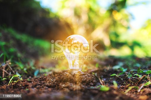 Closeup image of a light bulb glowing on pile of soil