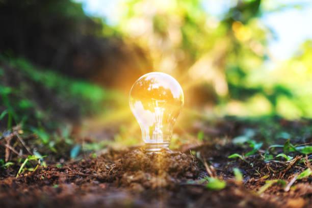 eine Glühbirne, die auf einem Haufen Erde glüht – Foto