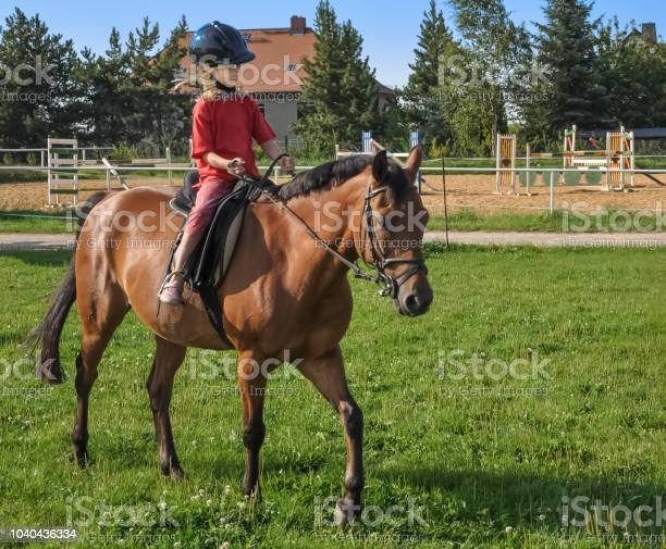 Ein kleines mdchen reitet allein auf einem braunen pferd picture id1040436334?b=1&k=6&m=1040436334&s=612x612&h= rukfmutzclyct486rcu1rt6wzk1n0hanheceal014y=