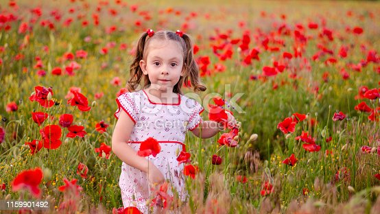 a little girl with blond hair in a bright dress with an ornament stands among a poppy field and holds a bouquet of poppy flowers
