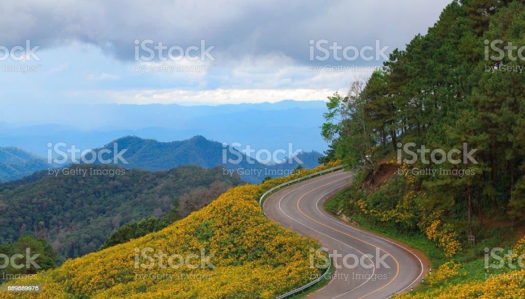eine Bergstraße durch Blumen – Foto
