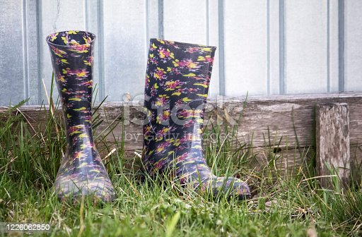 istock a pair of colored rubber boots on the green grass 1226062850