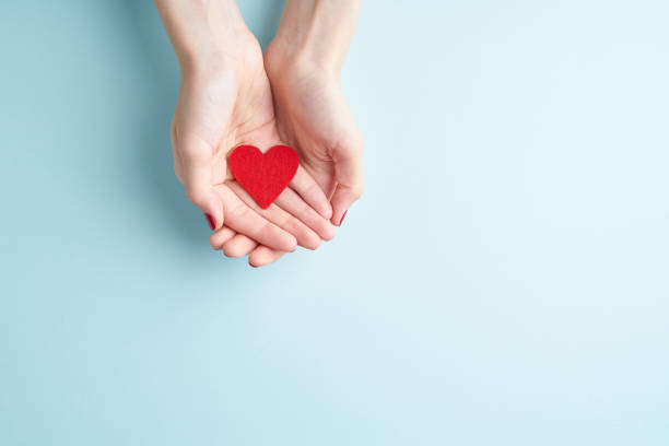a person holding red heart in hands, donate and family insurance concept, on aquamarine background, copy space top view - blood donation stock pictures, royalty-free photos & images