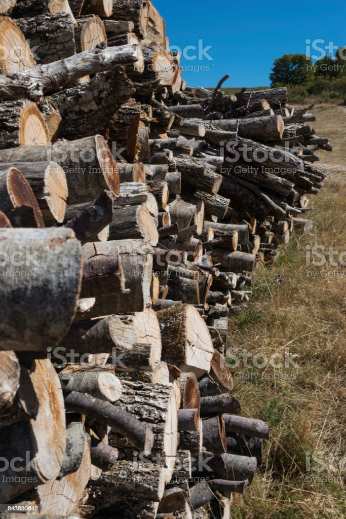 a pile of logs stock photo