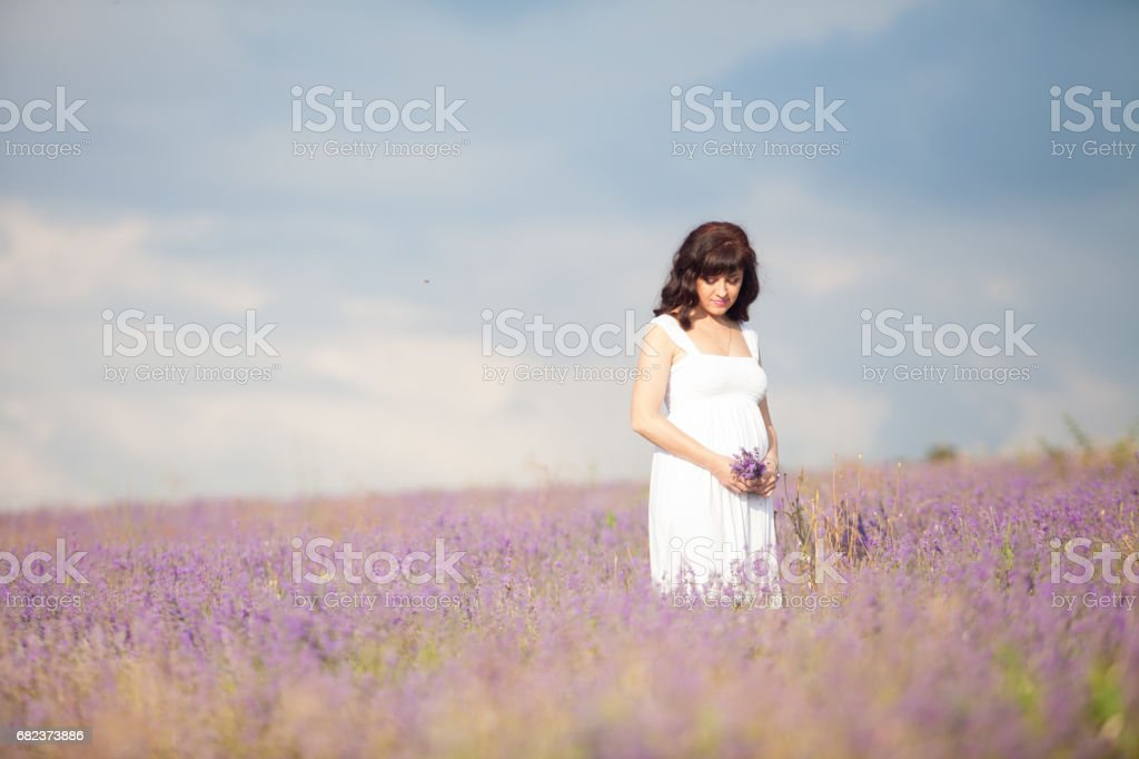 a pregnant woman in a field of flowers of lavender purple zbiór zdjęć royalty-free