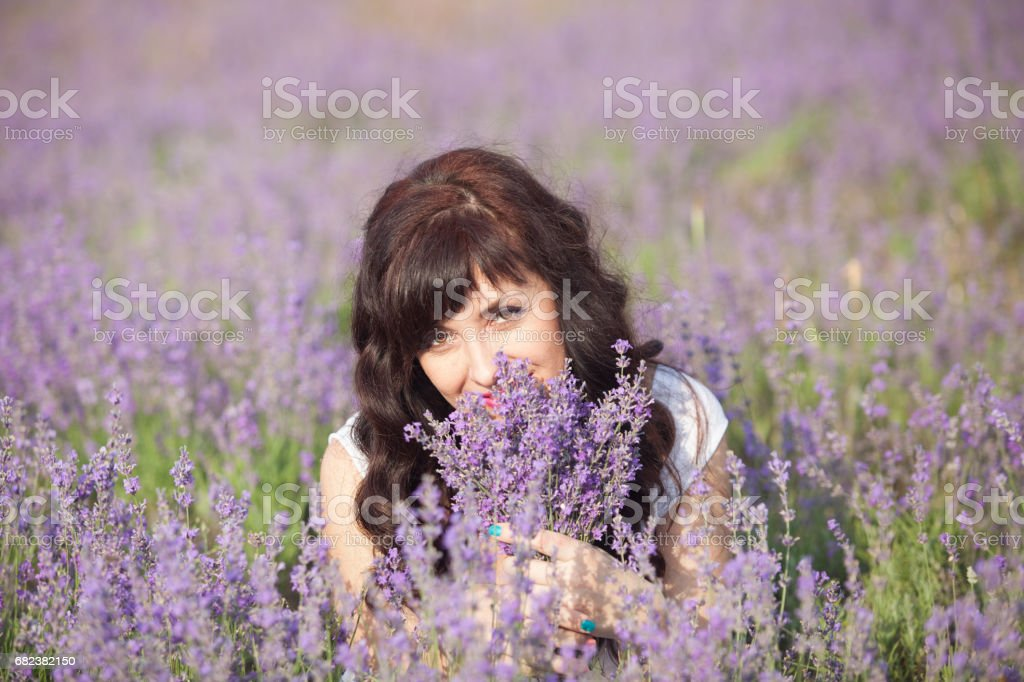 a pregnant woman in a field of flowers of lavender purple foto stock royalty-free