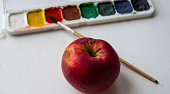 red apple and watercolor paint and brush on white background