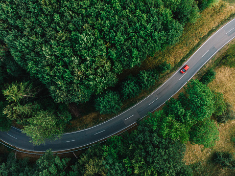 aerial view of a road with a curve at a forest