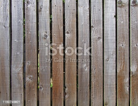 a row evenly spaced rough brown timber planks used as a garden fence