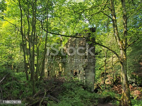 a ruined ancient stone building surrounded by green forest trees in bright sunlight originally called staups mill in west yorkshire