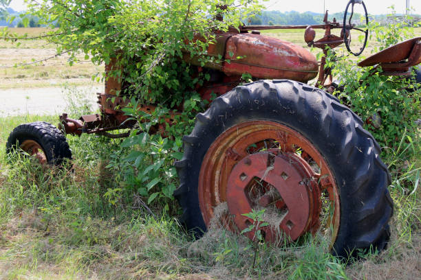 a rusted abandoned old vintage red farm tractor with overgrown wild grass and weeds featuring rural farmland and wild bushes blurred horizon line and blue sky stock photo
